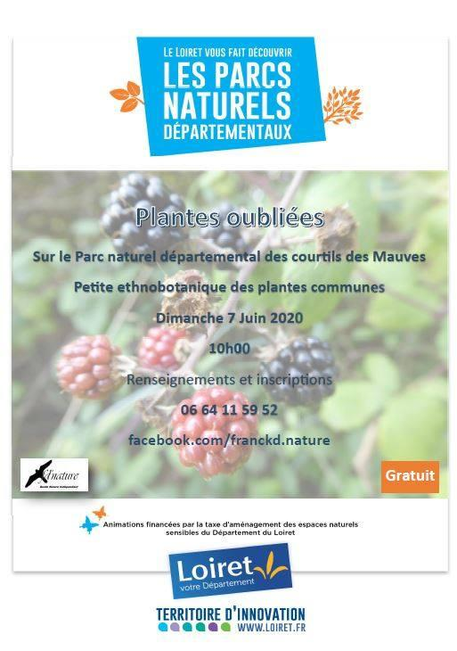 Plantes oubliees